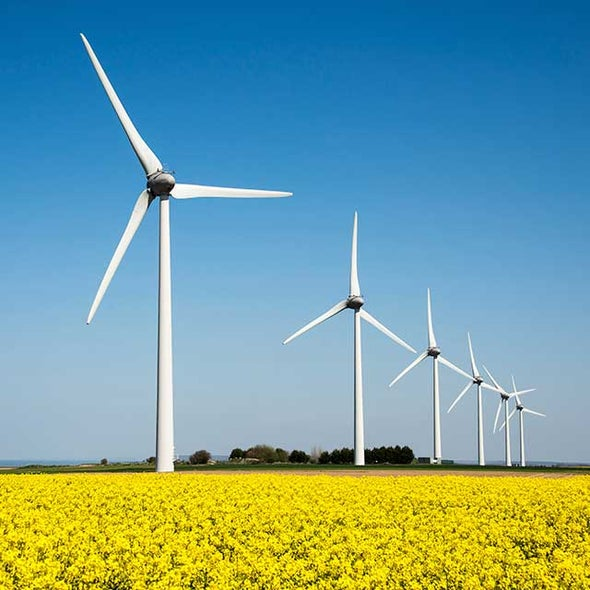 How Renewable Energy Could Make Climate Treaties Moot