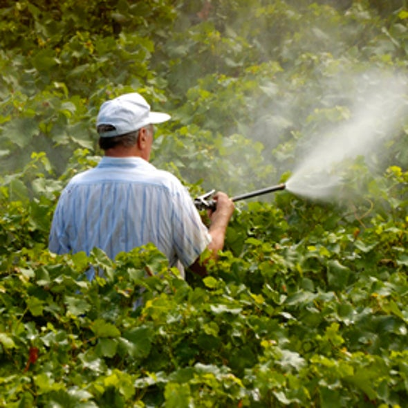 How Dangerous Is Pesticide Drift?