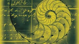 Beauty in Math and Art Activate Same Brain Area