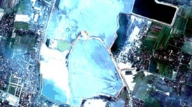 Mud Flood: Indonesian Eruption Also Spewed Oil