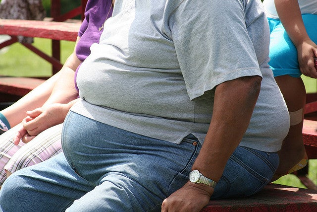 BPA May Prompt More Fat in the Human Body
