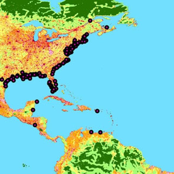 Oceanic Dead Zones Continue to Spread