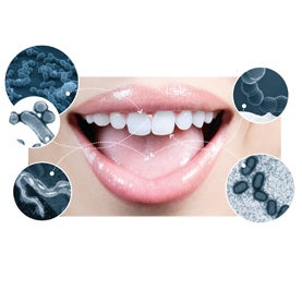 Bacteria Found In The Mouth 75