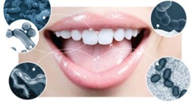 oral microbiota of kissing couple