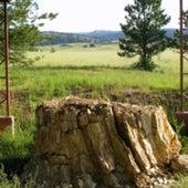 6. Florissant Fossil Beds