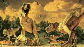 <i>T. Rex</i> Had a Social Life