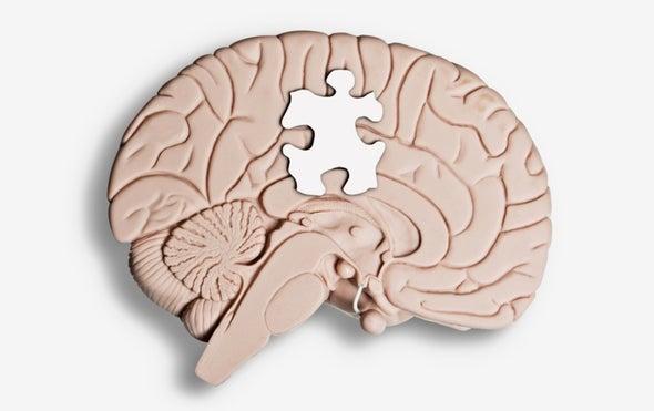 Brain Tissue Study Deepens Autism–Schizophrenia Link