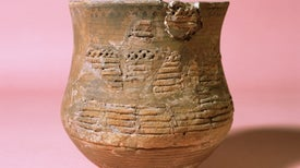 """Bronze-Age """"Beaker Culture"""" Invaded Britain, Ancient-Genome Study Finds"""