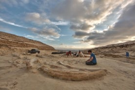 image of three people excavating several large whale bones in a sparse, dry landscape