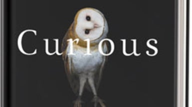 Book Review: Curious