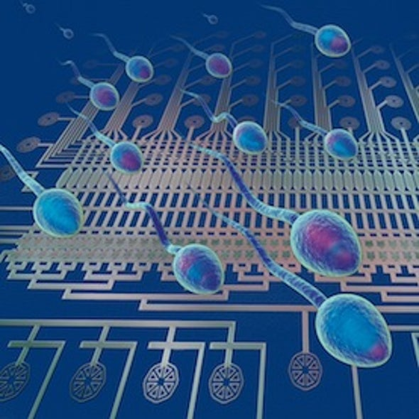 Sequencing of Single Sperm Could Reveal New Infertility Causes