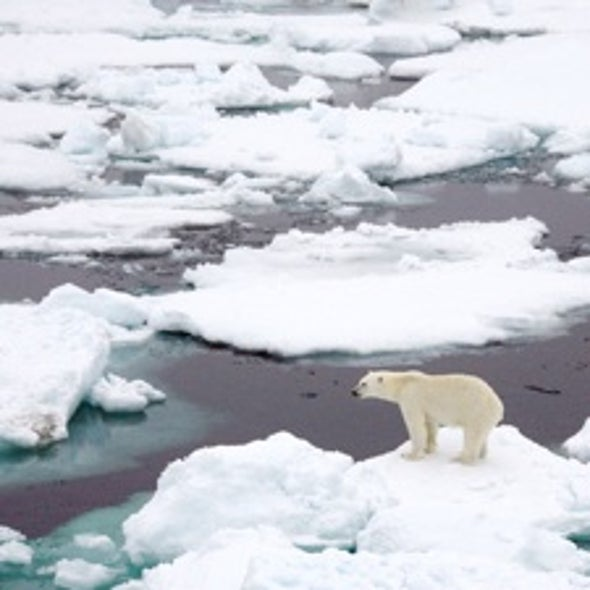 Sea Ice Loss Accelerates Arctic Warming