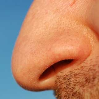Dueling Nostrils: Will It Be the Scent of a Rose or a Marker Pen?