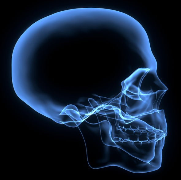 Your Skull Shapes Your Hearing