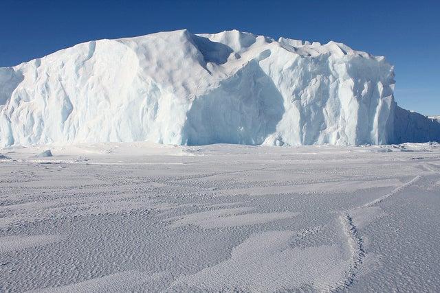 Antarctic Sea Ice Officially Hits New Record Maximum