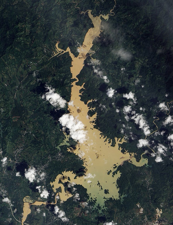 Can Satellites Track Life on Earth from Space?