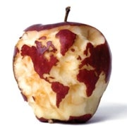 Can We Feed the World and Sustain the Planet?