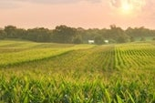 U.S. Bread Basket Shifts Thanks to Climate Change