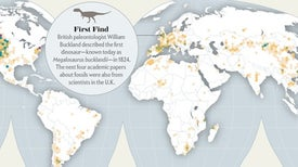 Dinosaur Discoveries Are Booming