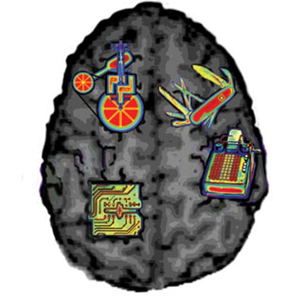 The Brain Is Not Modular: What fMRI Really Tells Us