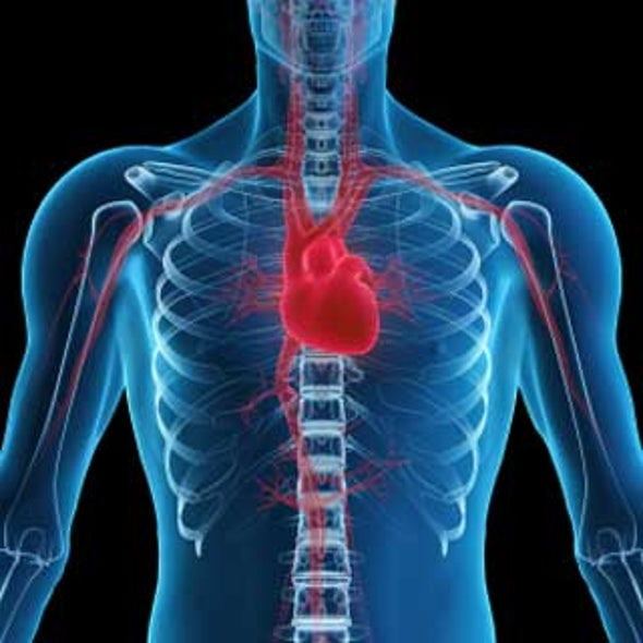 """Heart-Lung Machine May Not Be the Culprit in Post-Op """"Pump Head"""" Syndrome"""