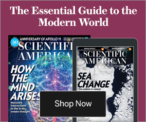 The Essential Guide to the Modern World