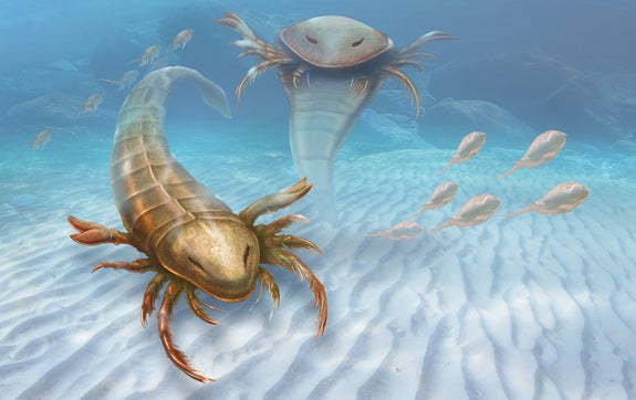 Primordial Sea Beast Resembled Ancient Greek Warship