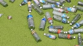 Plastic Not-So-Fantastic: How the Versatile Material Harms the Environment and Human Health