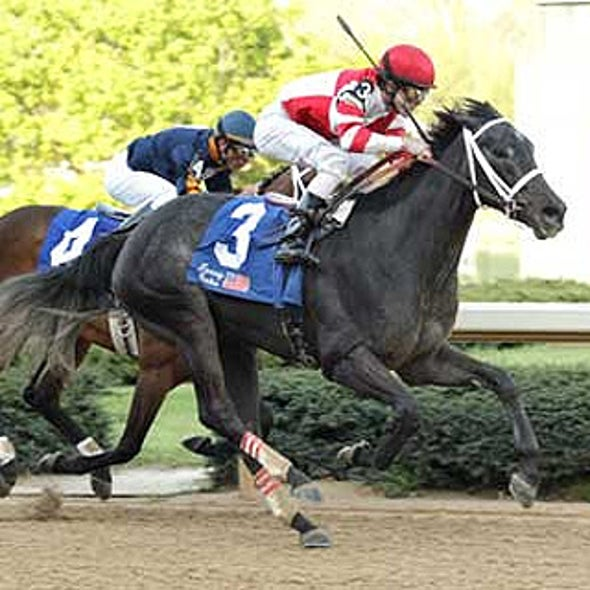 Horse Racing's Cripple Crown?: Industry Works to Prevent Fatal Injuries