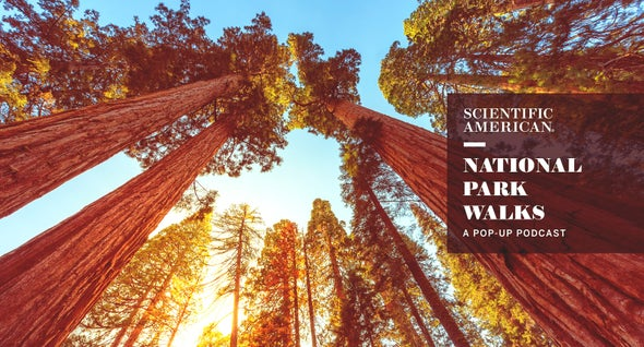 National Park Nature Walks: A New Pop-Up Podcast Series