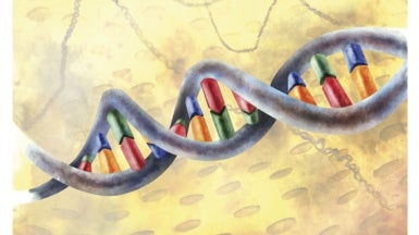 Unexplained 'Genetic Superheroes' Overcome Disease Mutations - Scientific American