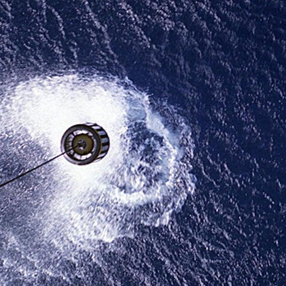 Does Military Sonar Kill Marine Wildlife?