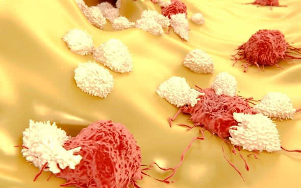 Safety Concerns Blight Promising Cancer Therapy