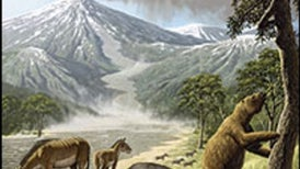 South America's Missing Mammals