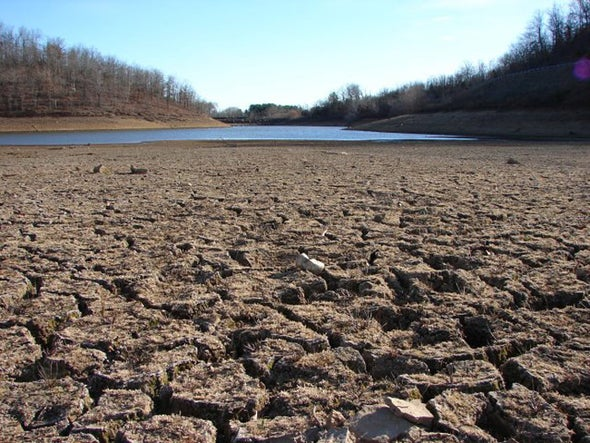 Drought-Parched California Tightens Restrictions on Wasting Water