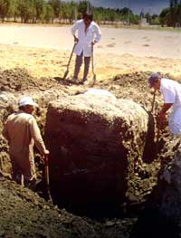 Radar Can Probe Soil's Structure