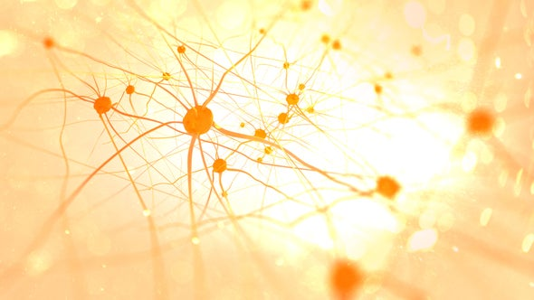 Scientists Surprised to Find No Two Neurons Are Genetically Alike