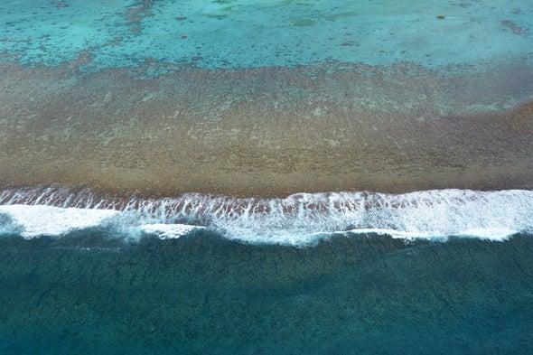 El ni_o现在变得更加强大和陌生,珊瑚记录显示