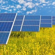 Caffeine Peps Up Solar Energy