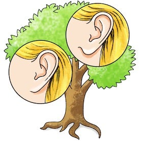 Follow Family Traits with an Easy Tree