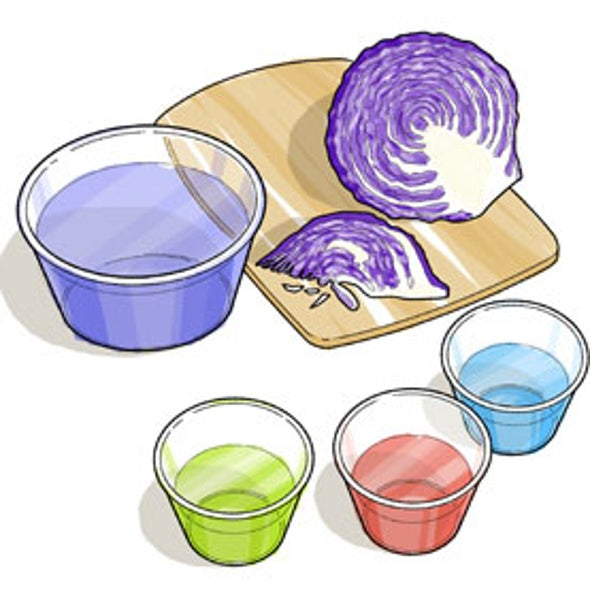 Cabbage Chemistry--Finding Acids and Bases