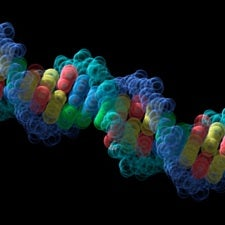 DNA Drugs Come of Age