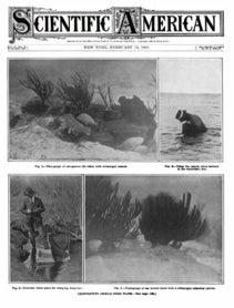 February 13, 1909