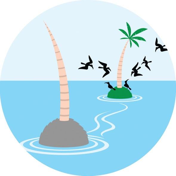 De-Ratting Rat Island Brought Silent Ecosystem Back to Life