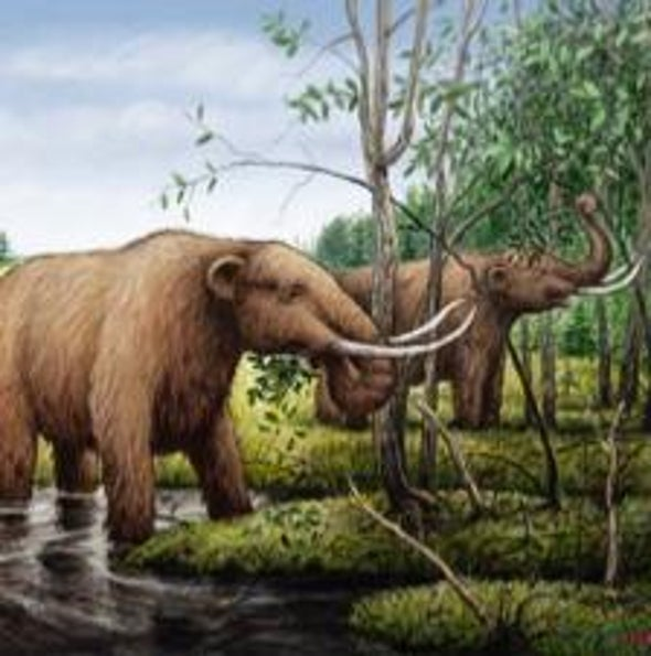 Lost Giants: Did Mammoths Vanish Before, During <i>and</i> After Humans Arrived?