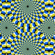 The Neuroscience of Illusion