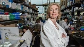 The Long View On Gene Editing