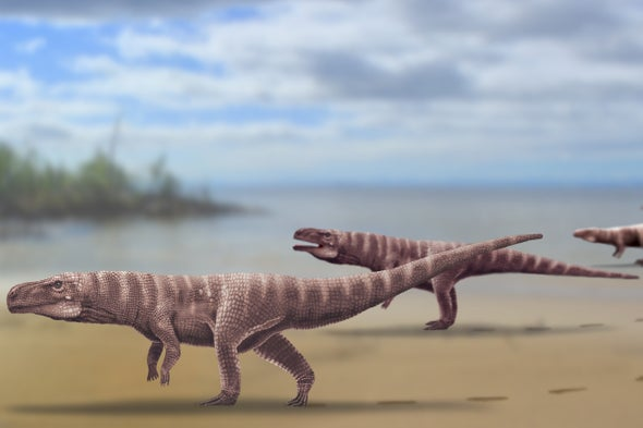 Fossil Footprints Help Uncover the Mysteries of Bipedal Crocodiles
