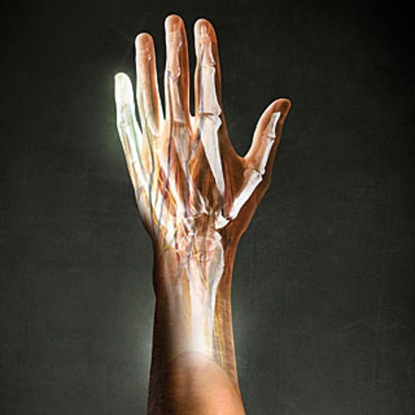 Regrowing Limbs: Can People Regenerate Body Parts?