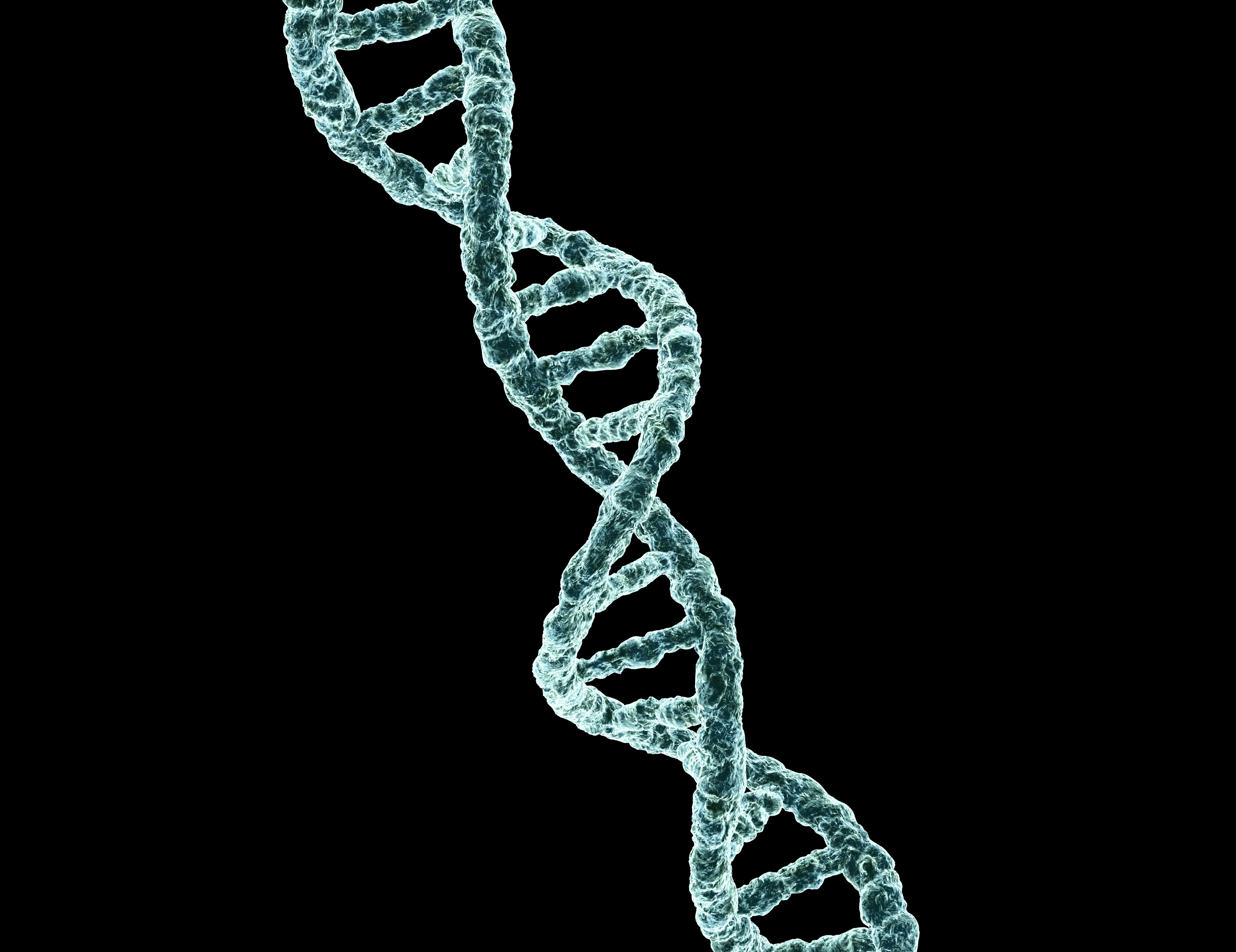 'Punch Card' DNA Could Mean Cheaper High-Capacity Data Storage